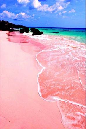 Las Bahamas playa rosada