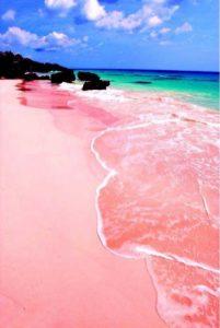 bahamas playa rosada