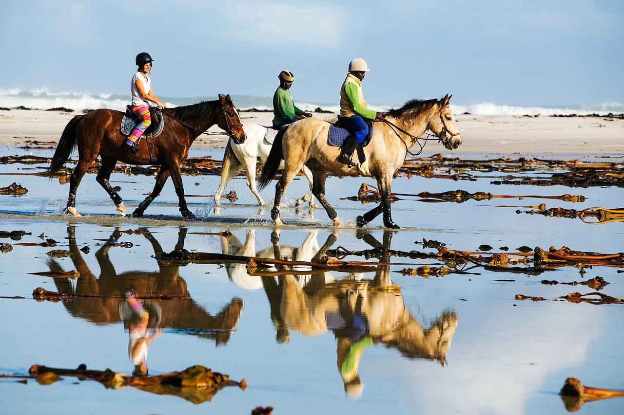 turismo de aventura cabalgata