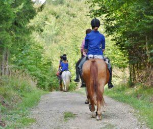 paseo a caballo turismo