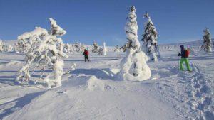 trekking con raquetas en finlandia